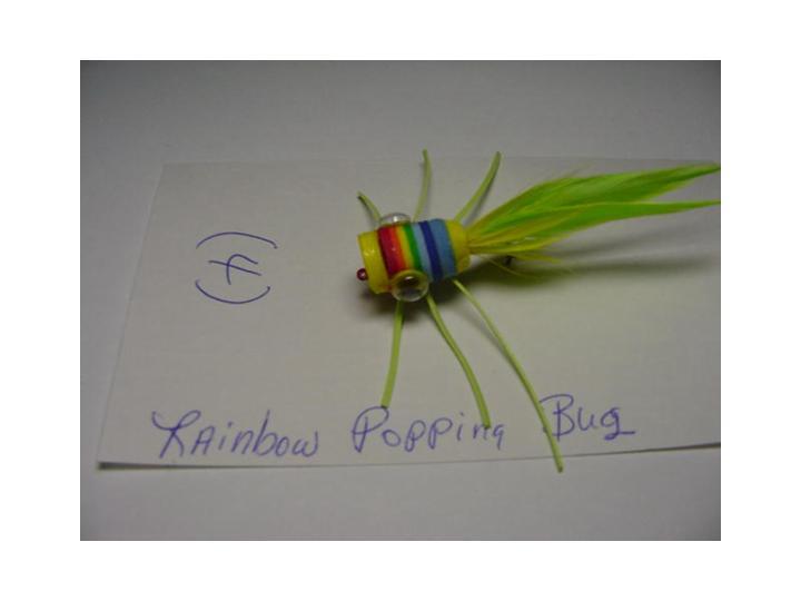 rainbowpoppingbug.jpg